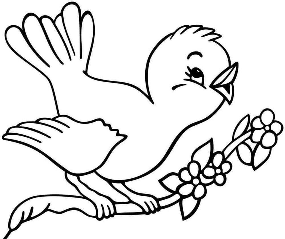 50+ bức tranh tô màu con chim đẹp nhất cho bé